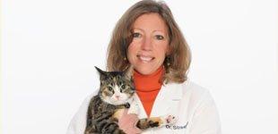 Team member Dr Teresa Streeper holding a cat